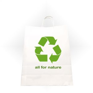 eco-friendly paper bag